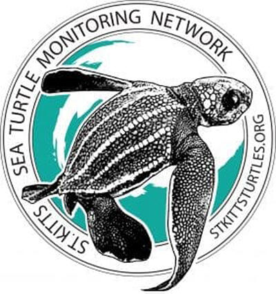 SEA TURTLES THREATENED: Sea turtles often mistake plastic bags for jellyfish, causing them to choke or starve. Image: Stkittsturtles.org