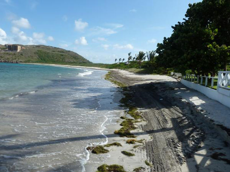 TURTLE BEACH: This secluded favorite is famous for great snorkeling. Photo: St. Kitts Tourism