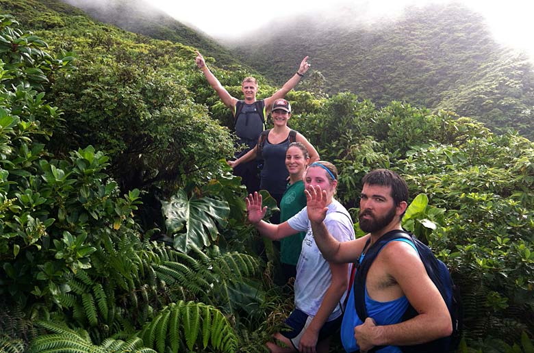 rainforest hike st. kitts